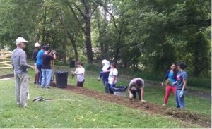 PSU students installing a flower bed next to a stone wall at Heller Homestead Park