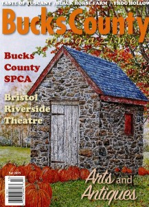 cover of buciks county